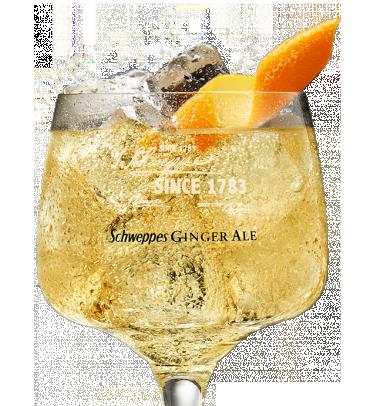 Zacapa Solera 23 & Ginger Ale Premium Mixer