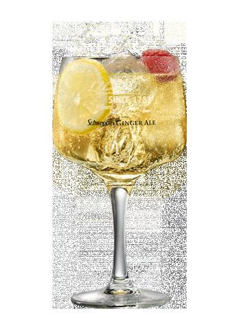 Ballantine's 12 & Ginger Ale Premium
