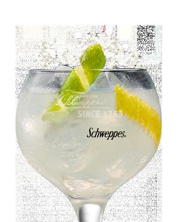 Bombay Sapphire & Limón Premium