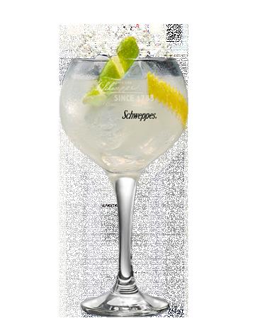 Tanqueray No. Ten & Limón Premium