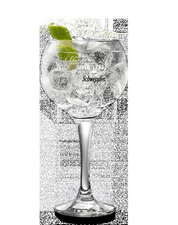 Martini Bianco & Tónica Original